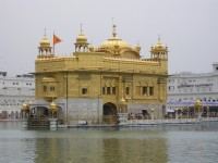 Striking gold in India