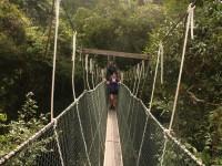 Conquering the canopy walkway at Taman Negara