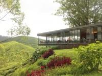 The Boh plantation cafe