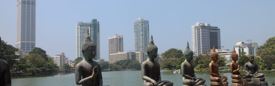 Great contrast of buddhas against some of Colombo's skyscrapers