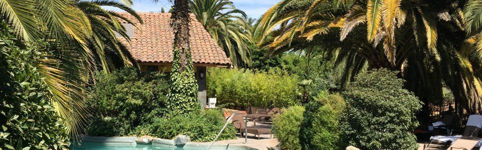 Santa Cruz: the heart of a Chilean wine valley