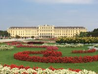 Oh Vienna, you mean something to me