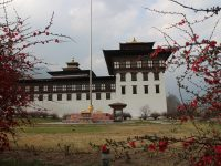 Tales from Thimphu: welcome to Bhutan