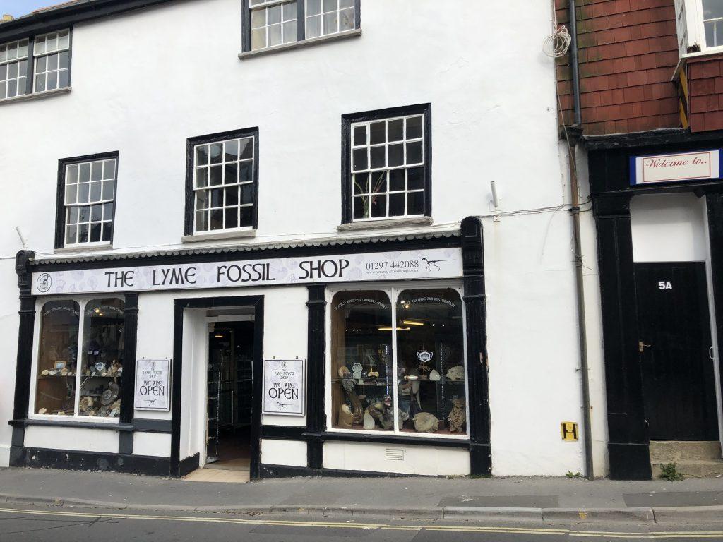 Lyme Fossil Shop